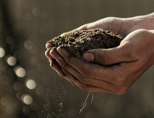Farmers Take Issue With USDA Hemp Regulations